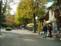 Bad Harzburgs schöne Bummelallee mit den alten Kastanien