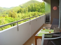 Balkon mit Blick auf den Harzer Wald