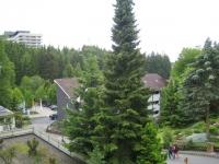 Der Panoramablick auf die Harzer Tannen