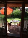 Zugang vom Wohnbereich auf die Terrasse im Grünen