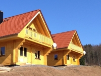 Harzer Blockhausmit Kaminofen