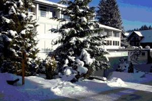 Traumhafte Winterlandschaft am Tannenhof