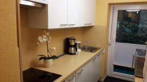 Die neue Einbauküche - mit allem Komfort ausgestattet