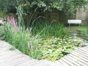 Teich mit 2 Terrassen